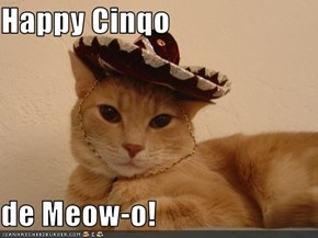 Happy Cinqo  de Meow-o!
