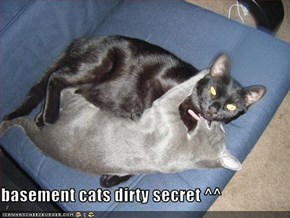 basement cats dirty secret ^^