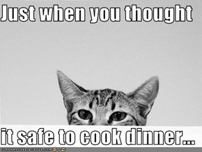 Just when you thought  it safe to cook dinner...