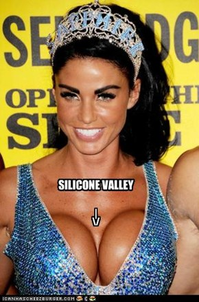 SILICONE VALLEY  |