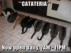 **CATATERIA**  Now open daily, 7AM - 11PM