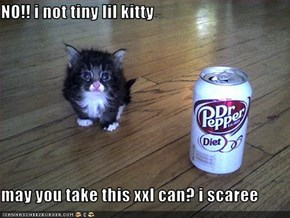 NO!! i not tiny lil kitty  may you take this xxl can? i scaree