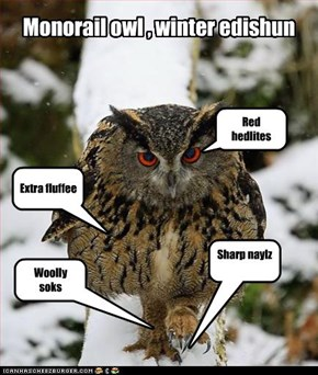 Monorail owl , winter edishun