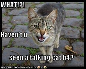 WHAT!?! Haven't u seen a talking cat b4?