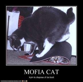 MOFIA CAT
