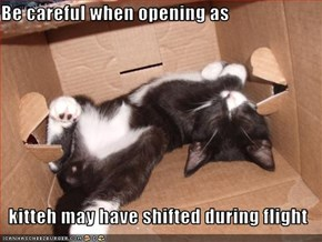 Be careful when opening as  kitteh may have shifted during flight