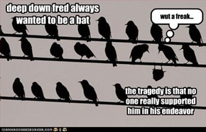 deep down fred always wanted to be a bat