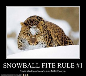 SNOWBALL FITE RULE #1