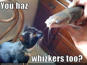 You haz  whizkers too?