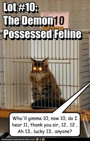 Lot #10: The Demon Possessed Feline