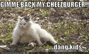 GIMME BACK MY CHEEZBURGER!!  dang kids...