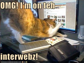 OMG! I'm on teh  interwebz!