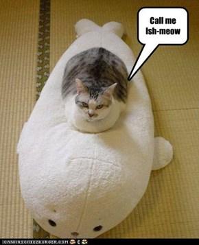 Call me Ish-meow
