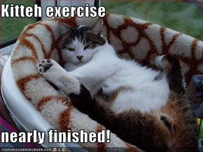 Kitteh exercise   nearly finished!