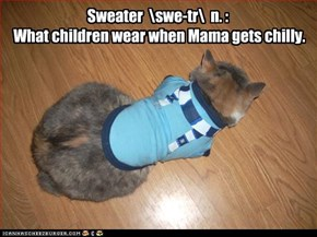 Sweater  \swe-tr\  n. :  What children wear when Mama gets chilly.
