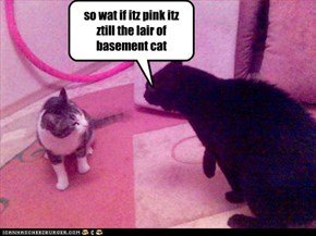 so wat if itz pink itz ztill the lair of basement cat