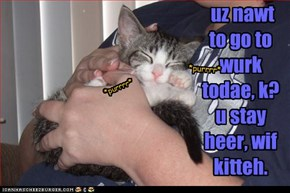 uz nawt to go to wurk todae, k? u stay heer, wif kitteh.