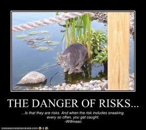 THE DANGER OF RISKS...