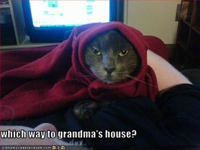 which way to grandma's house?