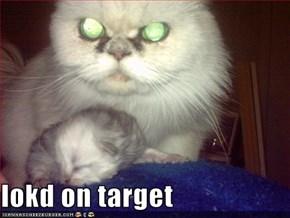 lokd on target