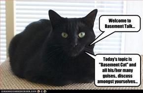 Calling for all Basement Cat lols!