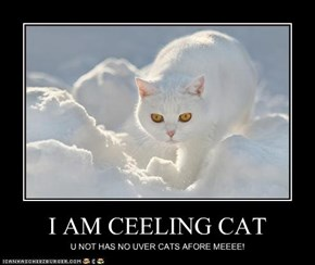 I AM CEELING CAT