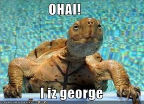 OHAI!                I iz george