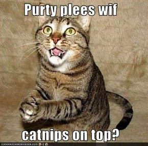 Purty plees wif   catnips on top?