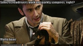 Sonic screwdrivers work on sparkly vampires, right?  Molto bene.