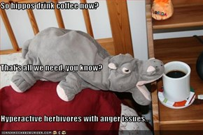 So hippos drink coffee now? That's all we need, you know? Hyperactive herbivores with anger issues...