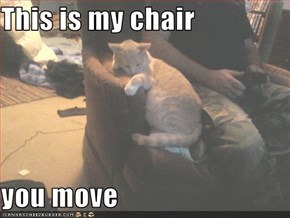 This is my chair   you move