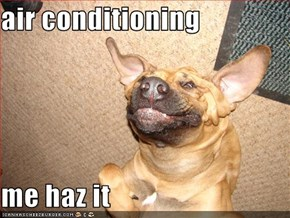 air conditioning  me haz it