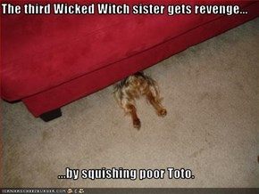 The third Wicked Witch sister gets revenge...  ...by squishing poor Toto.
