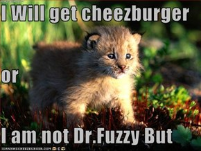 I Will get cheezburger or  I am not Dr.Fuzzy But