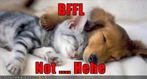 BFFL  Not .... Hehe