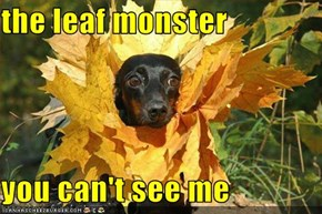 the leaf monster  you can't see me