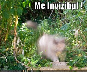 Me Invizibul !
