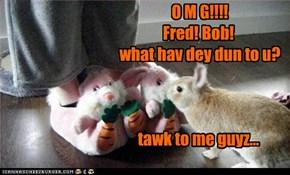 O M G!!!! Fred! Bob!  what hav dey dun to u?    tawk to me guyz...