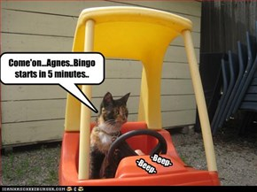 Come'on...Agnes..Bingo starts in 5 minutes..