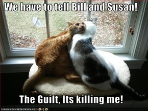 We have to tell Bill and Susan!  The Guilt, Its killing me!
