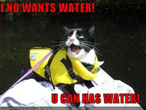 I NO WANTS WATER!  U CAN HAS WATER!