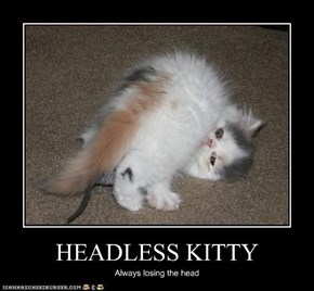 HEADLESS KITTY