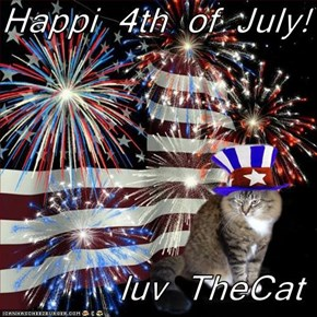Happi 4th of July!   luv TheCat