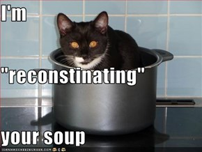 "I'm  ""reconstinating"" your soup"