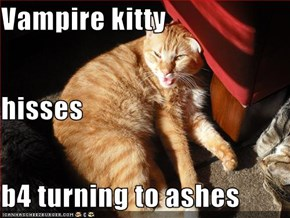 Vampire kitty hisses b4 turning to ashes