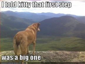 I told kitty that first step    was a big one