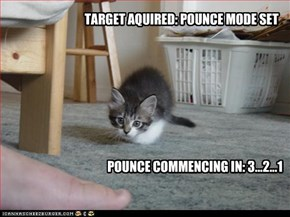 TARGET AQUIRED: POUNCE MODE SET