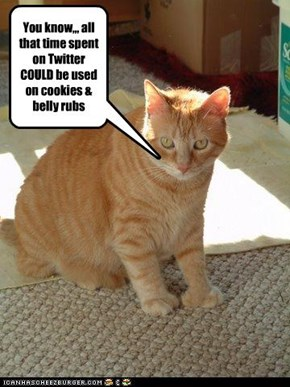 You know,,, all that time spent on Twitter  COULD be used on cookies & belly rubs