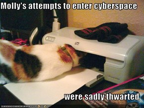 Molly's attempts to enter cyberspace  were sadly thwarted
