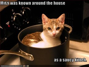 Mitzi was known around the house  as a saucy kitteh.